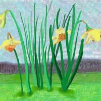 Дэвид Хокни: Помните, что нельзя отменить весну! ARTinvestment.RU20 марта 2020