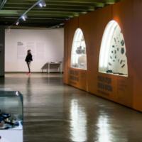 Ряд музеев Москвы подготовили онлайн-программу