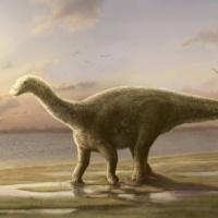Столичный житель: во времена Юрского периода в Московском регионе обитал родственник травоядного динозавра диплодока