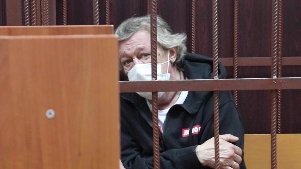 Доходы Михаила Ефремова: начем зарабатывал икуда тратил