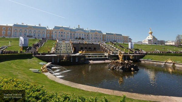 Коронавирус научил музеи Петербурга работать в онлайн-режиме