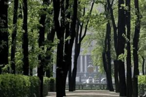Михайловский сад в Петербурге открыли для посещения
