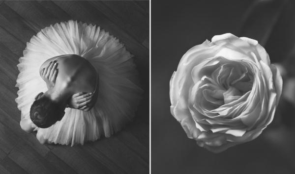 Балерина ицветы: фотосерия осходстве двух изяществ