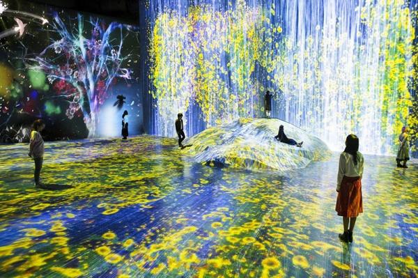 ВЯпонии открыли первый вмире интерактивный музей цифрового искусства