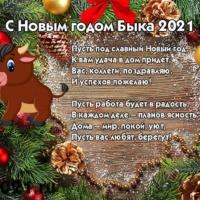 С наступающим Новым 2021 годом